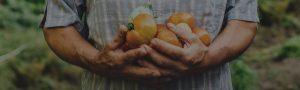 Légumes Saint-Placide